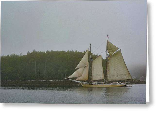 Sailing In The Mist Greeting Card