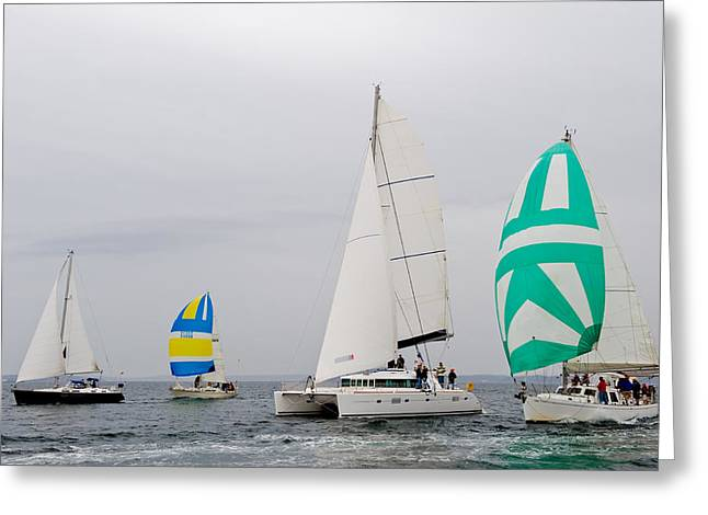 Sailing In The Mist Greeting Card by Tom Dowd