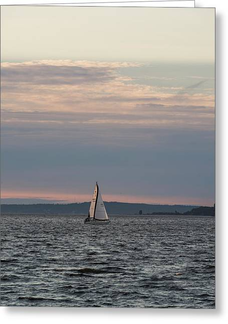 Sailing In The Puget Sound Greeting Card