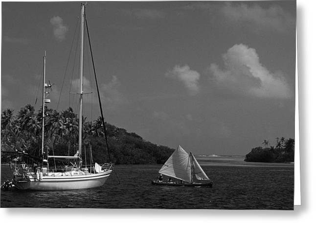 Sailing In The San Blais Islands Greeting Card