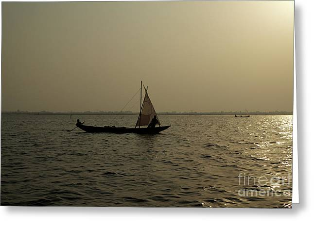 Sailing Into The Sunset Greeting Card by David Shaffer