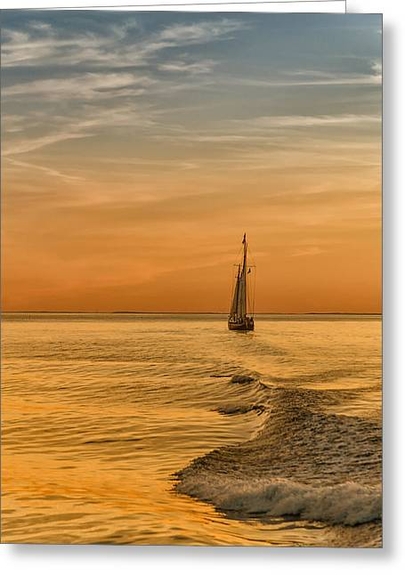 Sailing Into The Sunset Greeting Card by Linda Pulvermacher