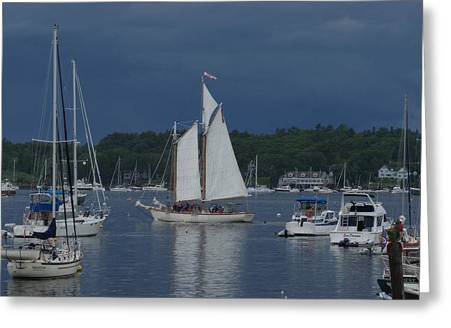 Sailing Greeting Card by Lois Lepisto