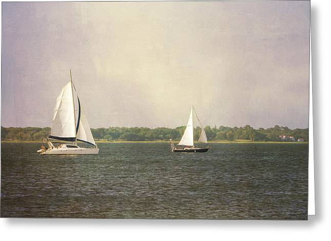 Greeting Card featuring the photograph Sailing by Michael Colgate