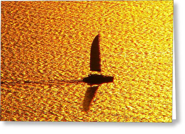 Greeting Card featuring the photograph Sailing On Gold by Ana Maria Edulescu