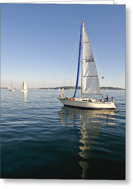 Sailing Reflection Greeting Card by Tom Dowd