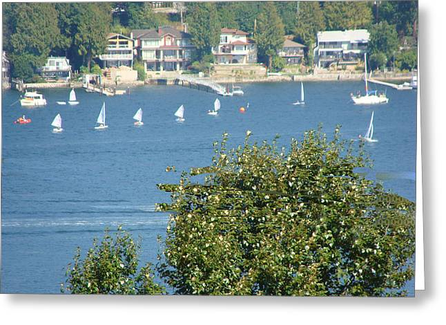 Sailing Greeting Card by Rod Jellison