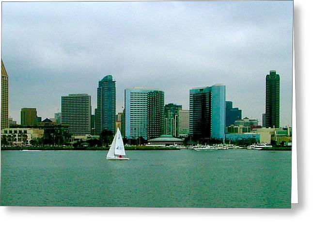 Sailing San Diego Greeting Card by Brent Sisson