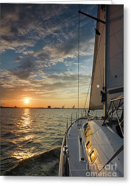 Sailing Sunset On The Charleston Harbor Beneteau 49 Greeting Card by Dustin K Ryan