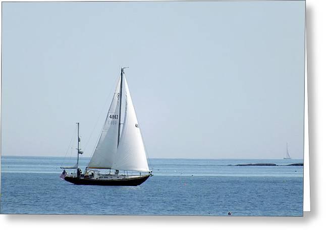 Sailing The Coast Greeting Card
