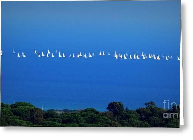 Sailing The Sea And Sky Greeting Card