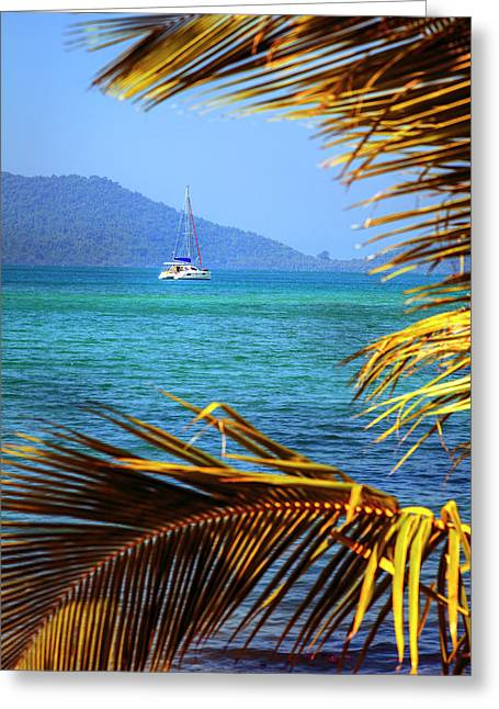 Greeting Card featuring the photograph Sailing Vacation by Alexey Stiop