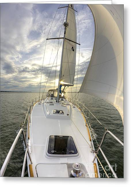 Sailing Yacht Fate Beneteau 49 Greeting Card by Dustin K Ryan
