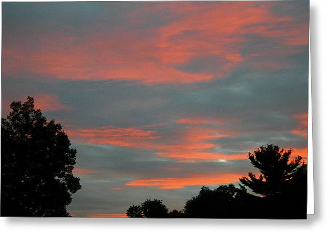 Sailor's Delight Greeting Card by Randy Rosenberger