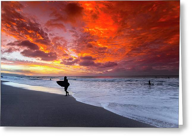 Sailors Delight Greeting Card by Sean Davey