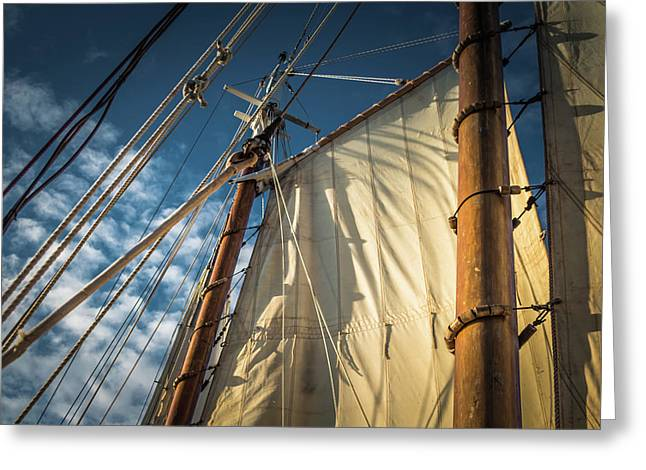 Sails In The Breeze Greeting Card