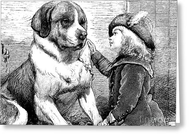 Saint Bernard And Little Girl Greeting Card