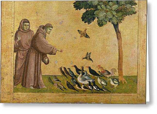 Saint Francis Of Assisi Preaching To The Birds Greeting Card by Giotto di Bondone