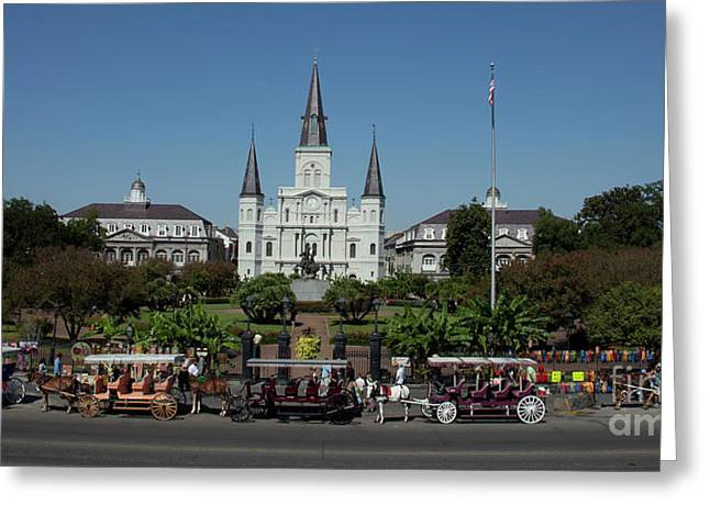 Greeting Card featuring the photograph Saint Lewis Cathedral French Quarter New Orleans, La by Ron Sadlier