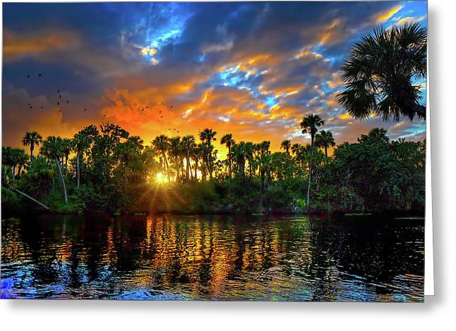 Saint Lucie River Sunset Greeting Card by Mark Andrew Thomas