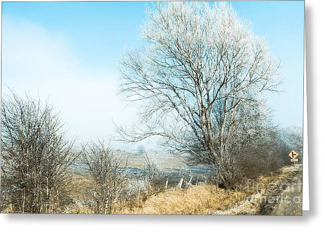Saint Marys Snowstorm Greeting Card by Jorgo Photography - Wall Art Gallery
