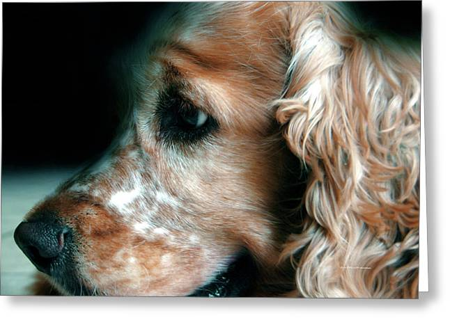 Saint Shaggy Art Photograph  13 Greeting Card