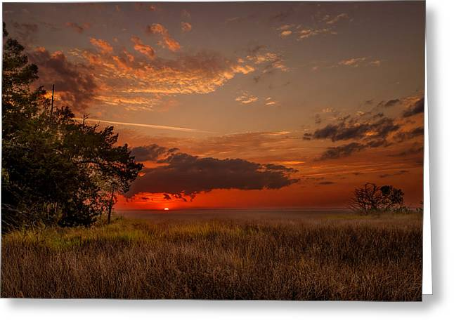 Saint Simons Island Salt Marsh Twilight Greeting Card