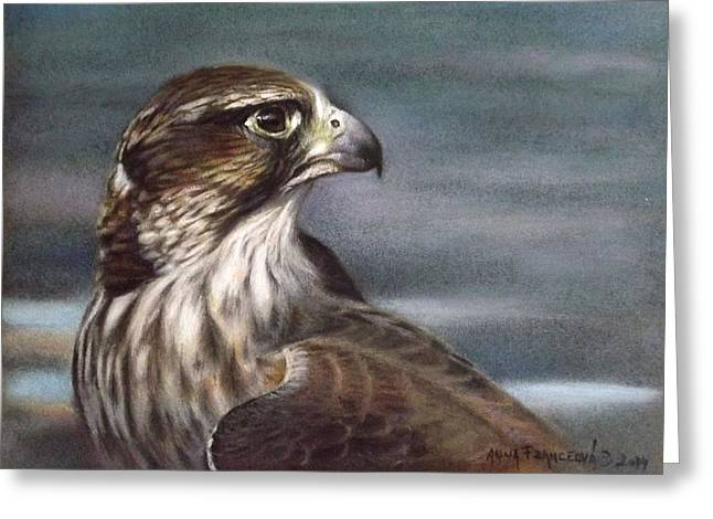 Saker Falcon Greeting Card by Anna Franceova