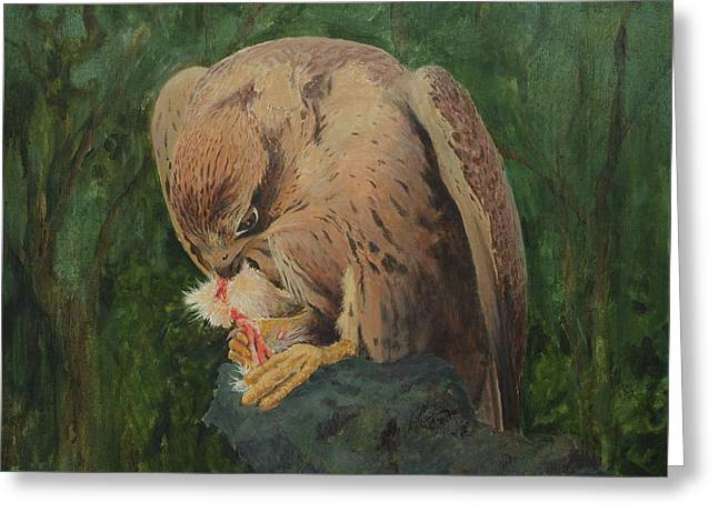 Saker Falcon Lunch Greeting Card
