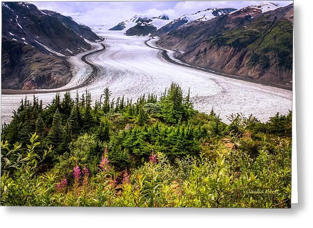Salmon Glacier Greeting Card