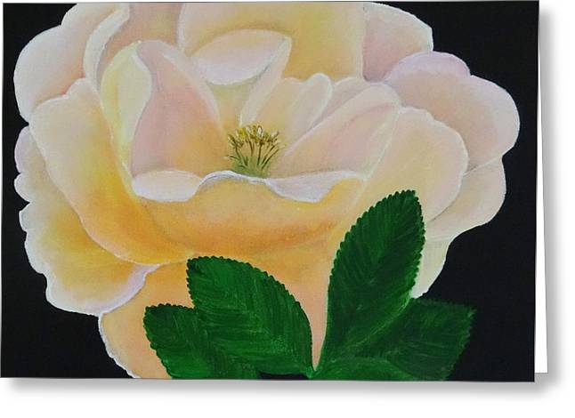 Salmon Pink Rose Greeting Card by Karen Jane Jones