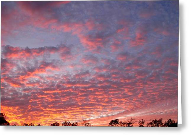 Greeting Card featuring the photograph Salmon Sunset by Jeanne Kay Juhos