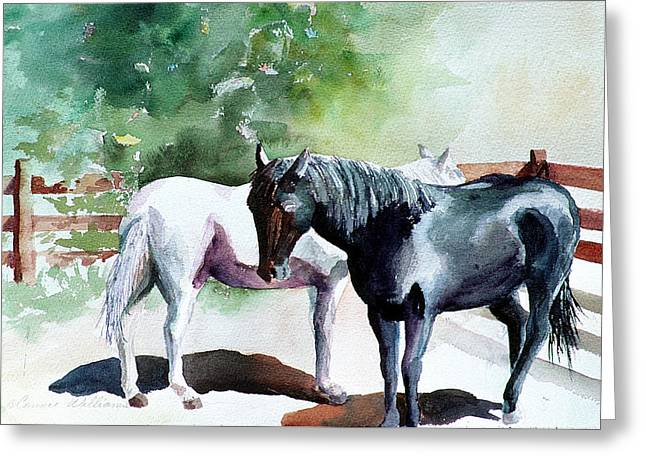 Salt And Pepper Horses Greeting Card