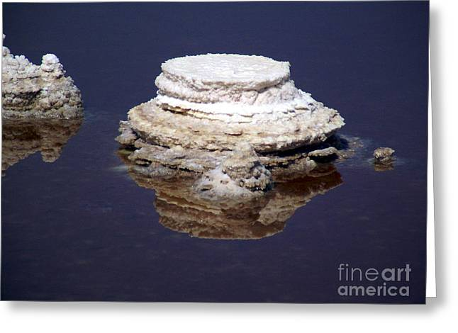 salt cristal at the Dead Sea Israel  Greeting Card by Avi Horovitz