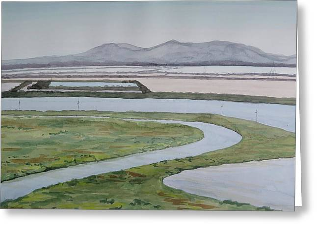 Salt Fields Greeting Card by Bethany Lee