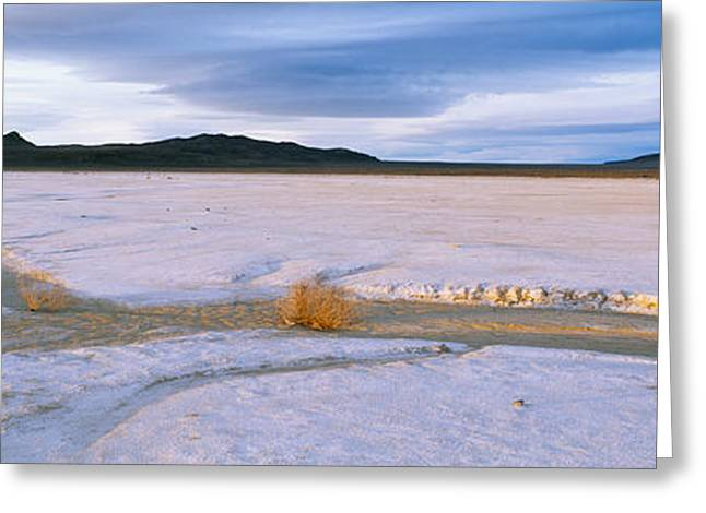 Salt Flats At Sunset, Route 50, Nevada Greeting Card by Panoramic Images