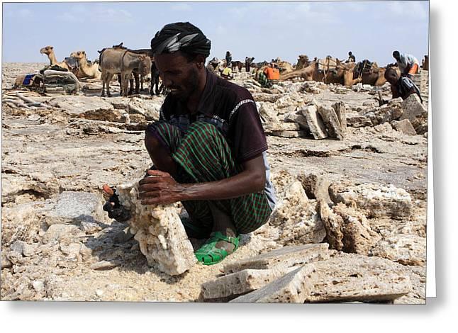 Salt Miner, Danakil Depression, Ethiopia Greeting Card