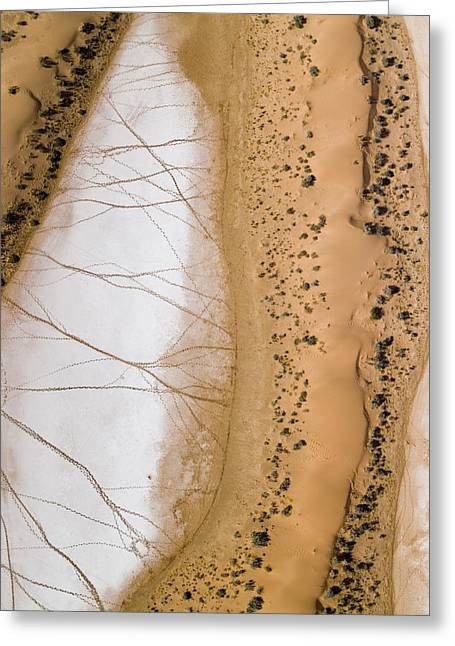 Salt Pans Deep In The Kalahari With 4x4 Greeting Card by Michael Fay