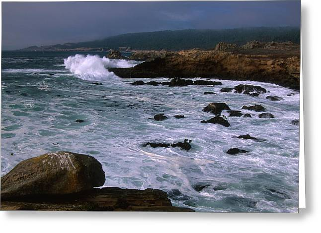 Salt Point State Park Greeting Card by Soli Deo Gloria Wilderness And Wildlife Photography