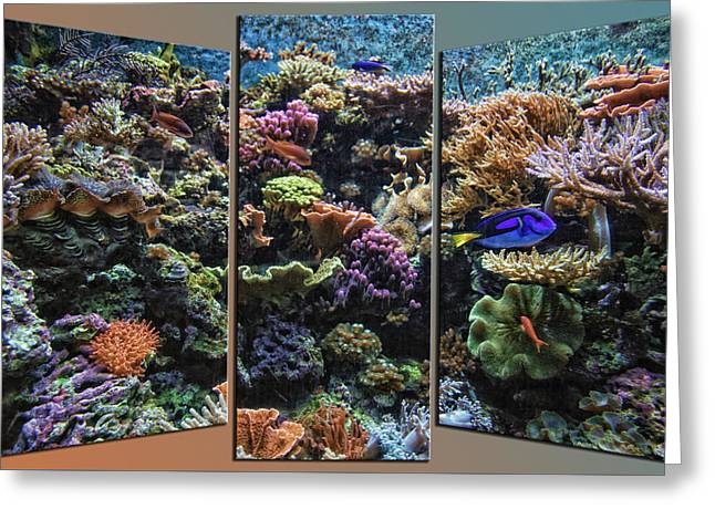Salt Water Reef And Fish Triptych 3 Panel 01 Greeting Card