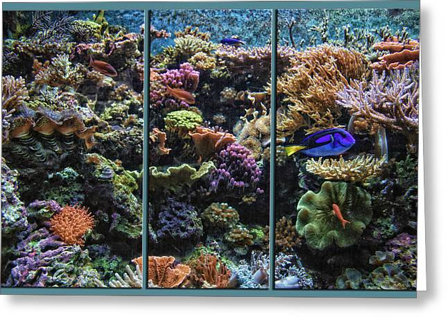 Salt Water Reef And Fish Triptych 3 Panel 02 Greeting Card