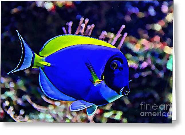 Saltwater Fish Blue Tang Greeting Card by Marvin Blaine