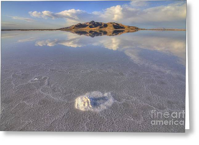 Salty Reflection Greeting Card