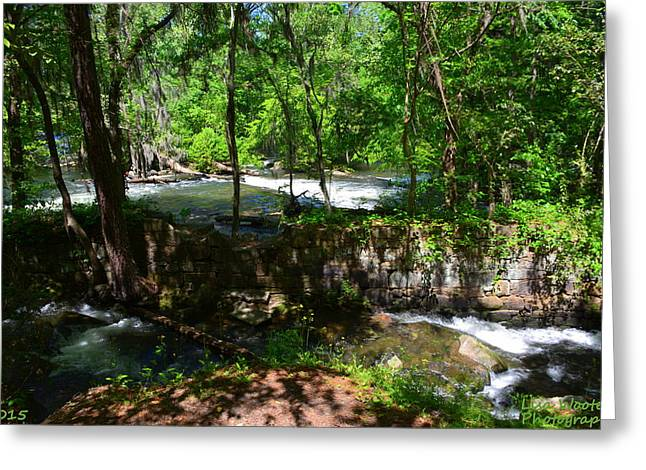 Greeting Card featuring the photograph Saluda River Columbia Sc by Lisa Wooten