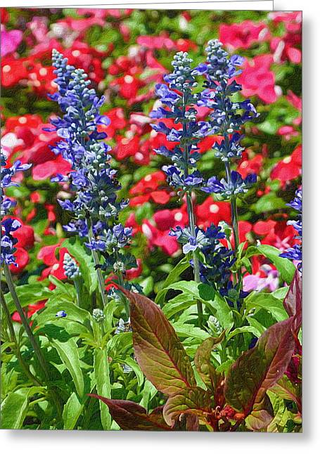 Salvia Blue In Textures Greeting Card