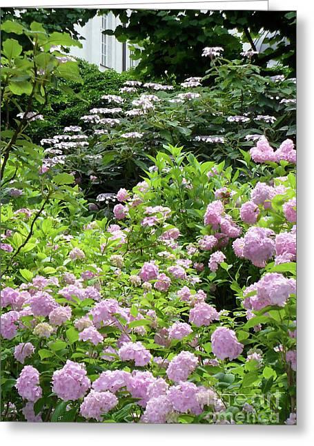 Salzburg Garden With Vignette Greeting Card