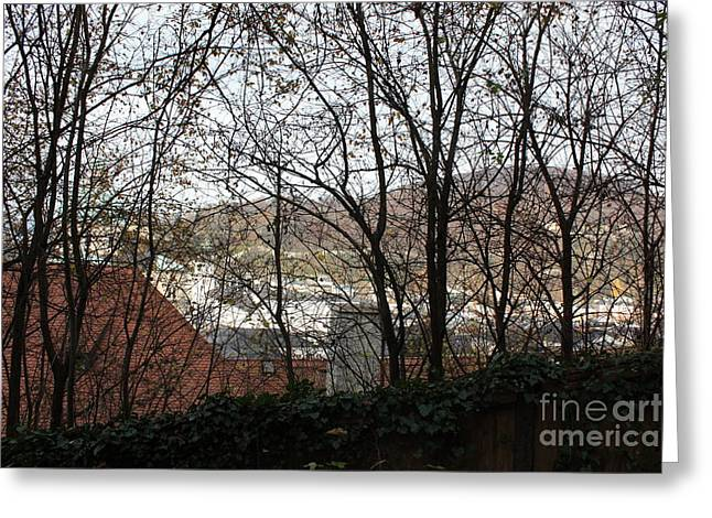 Salzburg Through The Trees Greeting Card by Joan Sharron