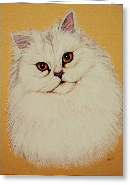 Sam - Persian Cat Greeting Card by Lucy Deane