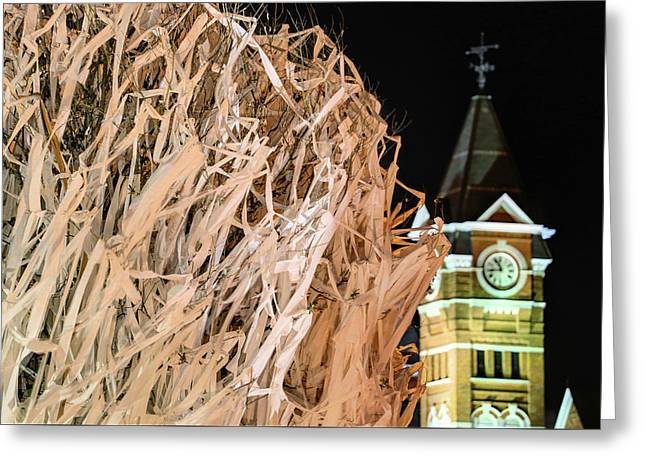 Samford Hall And Rolling Toomer's Greeting Card by JC Findley