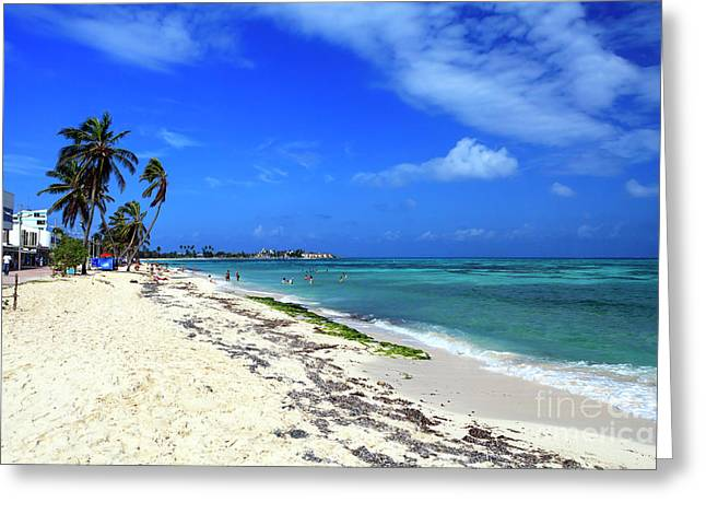 San Andres Island Beach View Greeting Card by John Rizzuto